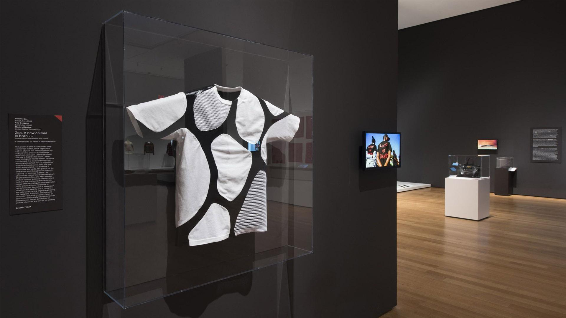 Zoa shirt on display at MoMA