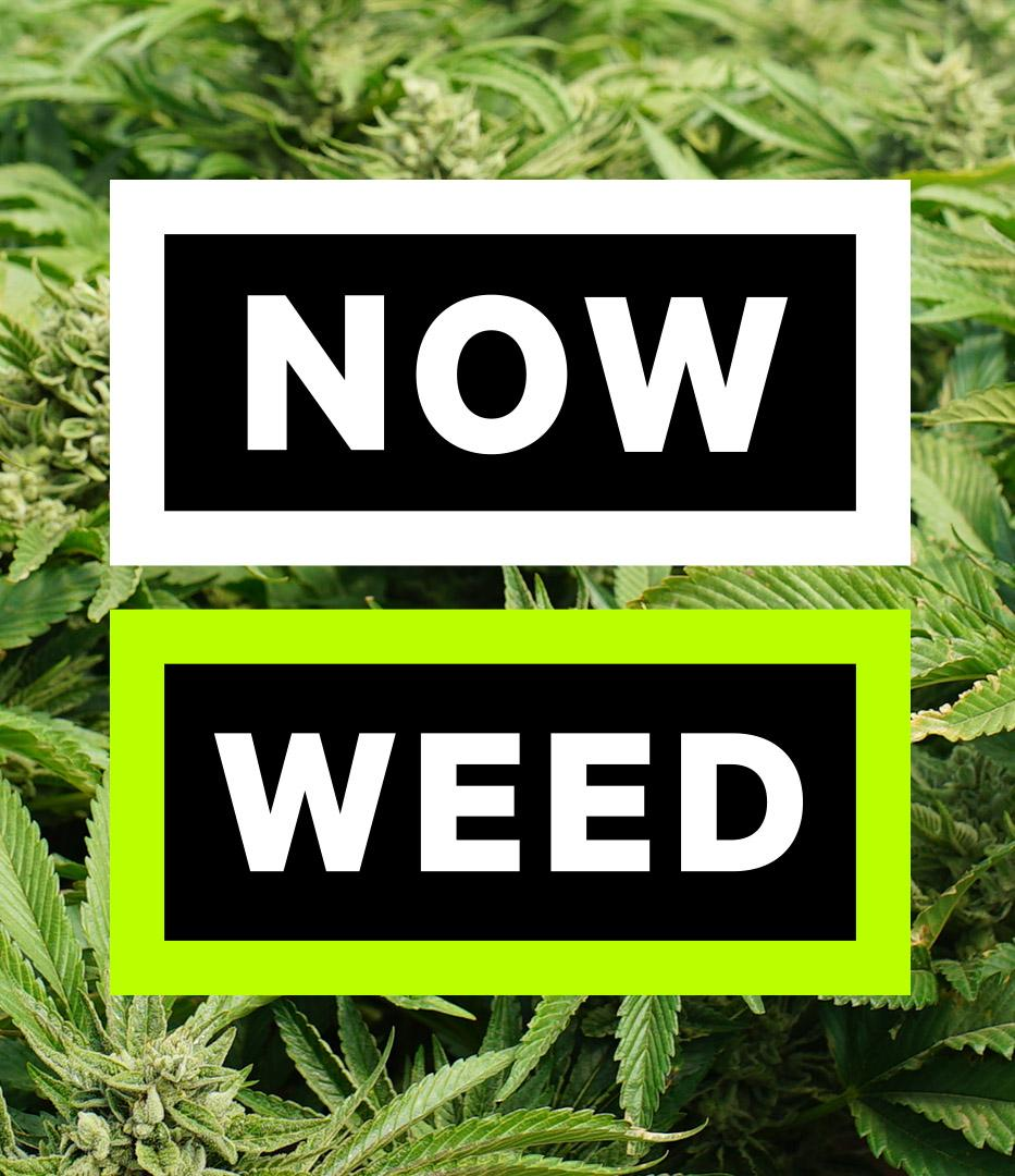 Now This logo Now Weed